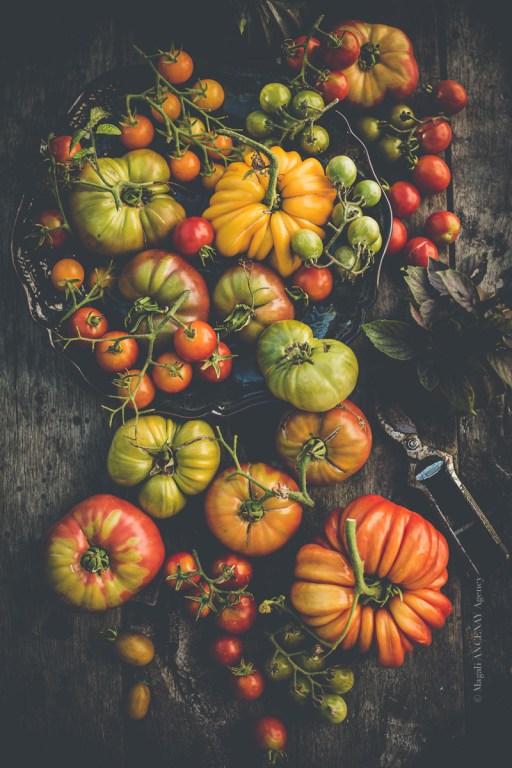 Mix de tomates anciennes 2019 - Magali ANCENAY