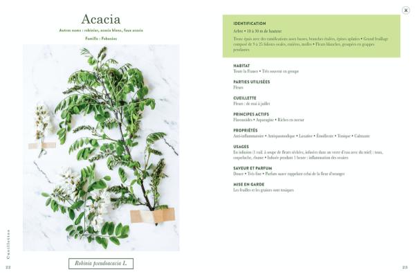 Livre Cueillettes - Magali Ancenay - 3