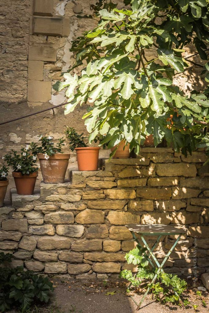 Vue des jardin du Palais Saint Firmin - Magali ANCENAY