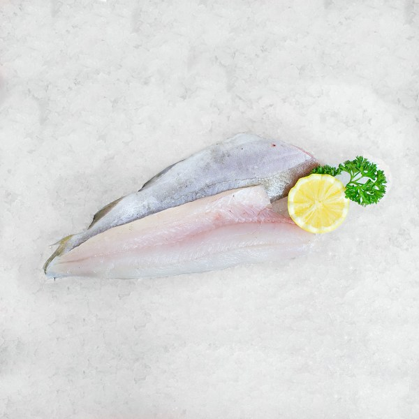 Whiting Fillet Quayside Fish