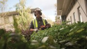 How technology can cure property managers' grounds maintenance headaches