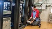 Deploying digital solutions for preventative pest control