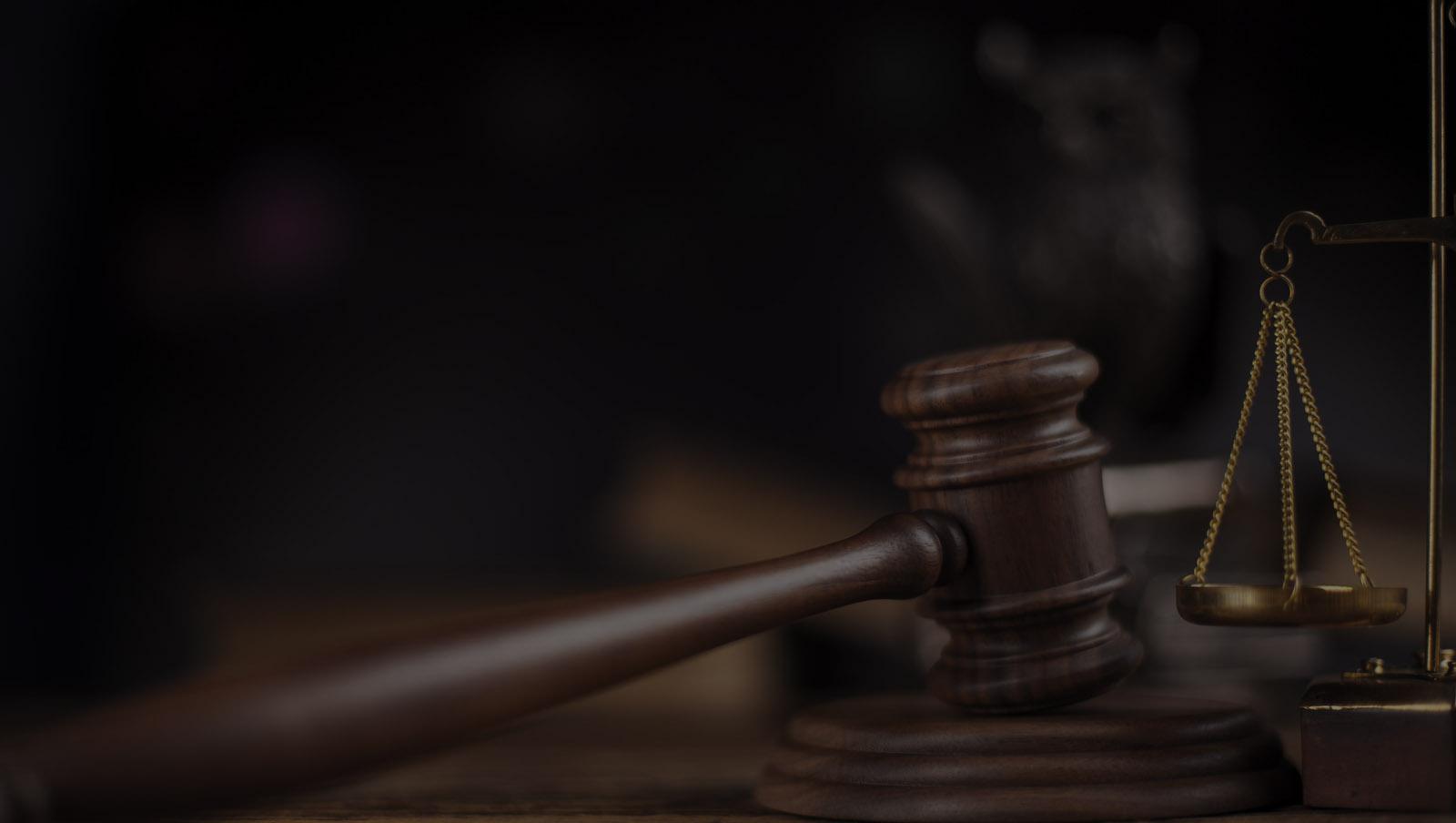 Lawyers Edmonton Gavel