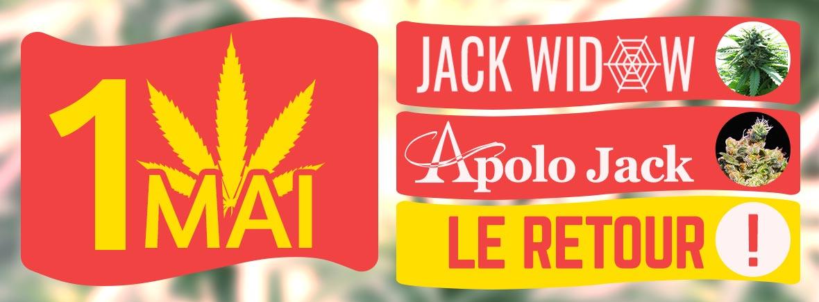 Apolo Jack & Jack Widow de retour le 1er mai