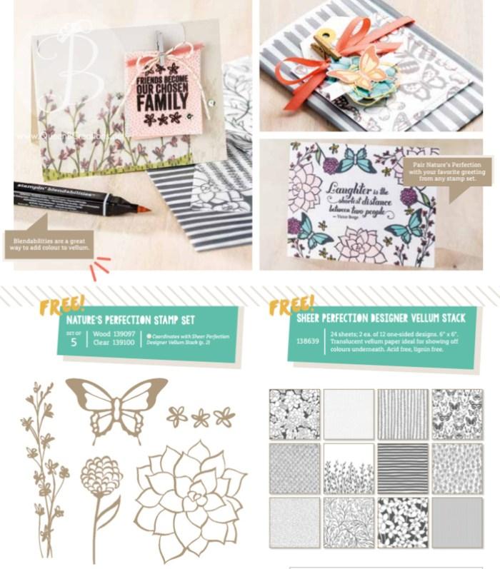 new-saleabration-items-pg-2