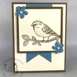 Handmade birthday card made with Stampin