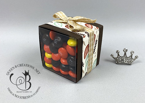 Stampin' Up! Gilded Autumn wrapped 2 inch acetate box with Skittles and M&M Candy by Lisa Ann Bernard of Queen B Creations