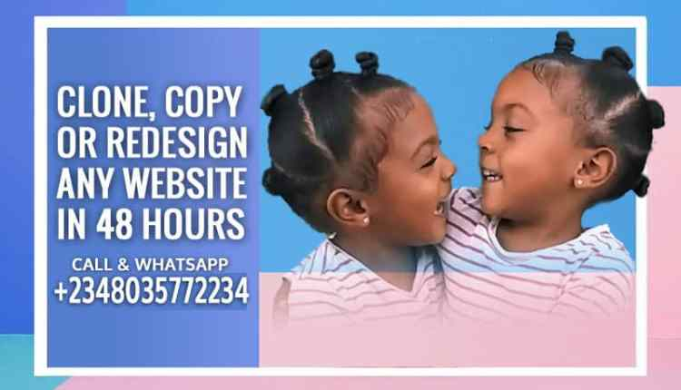Clone Copy Or Redesign Any Existing Website In 48 hours 1