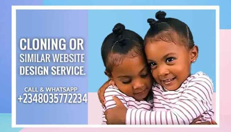 Cloning Or Similar Website Design Service. 2