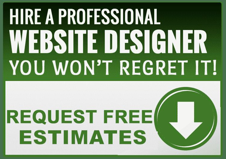 Hire Professional Website Designer