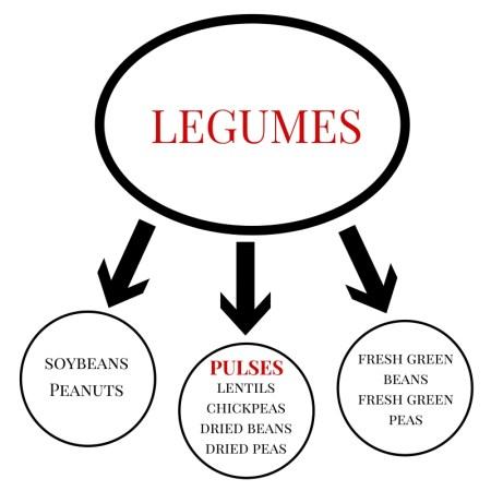 Legumes Graphic