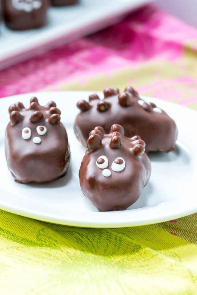 "Healthy Hedgehog Candies – A small bite treat made with healthy ingredients that you can enjoy guilt-free. If you have kids they'll never know this isn't ""real"" candy. 