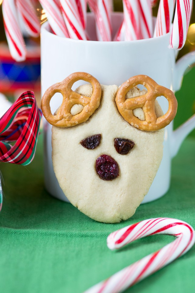 Vegan Rudolph Reindeer Cookies – An easy and fun Christmas cookie recipe. Even young children can help make these. Soft and chewy with a super clean taste. Gluten-free and dairy-free. | QueenofMyKitchen.com #christmascookies #cookies #christmas #cookiesforsanta #christmasbakingforkids #christmasbaking #vegan #christmasvegan #vegancookies #christmascookieseasy