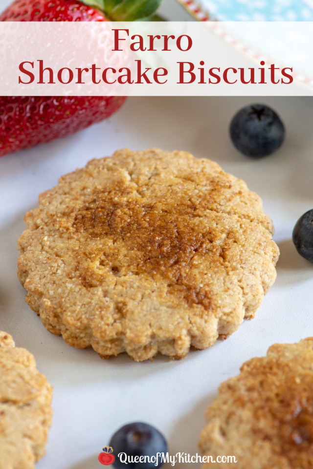 Farro Shortcake Biscuits - A healthier version of classic shortcake biscuits made with the Italian ancient grain farro. Delicious and nutritious! | QueenofMyKitchen.com | #dessert #desserts #ancientgrains #healthybaking #strawberryshortcake #shortcake #shortcakebiscuit #shortcakebiscuits