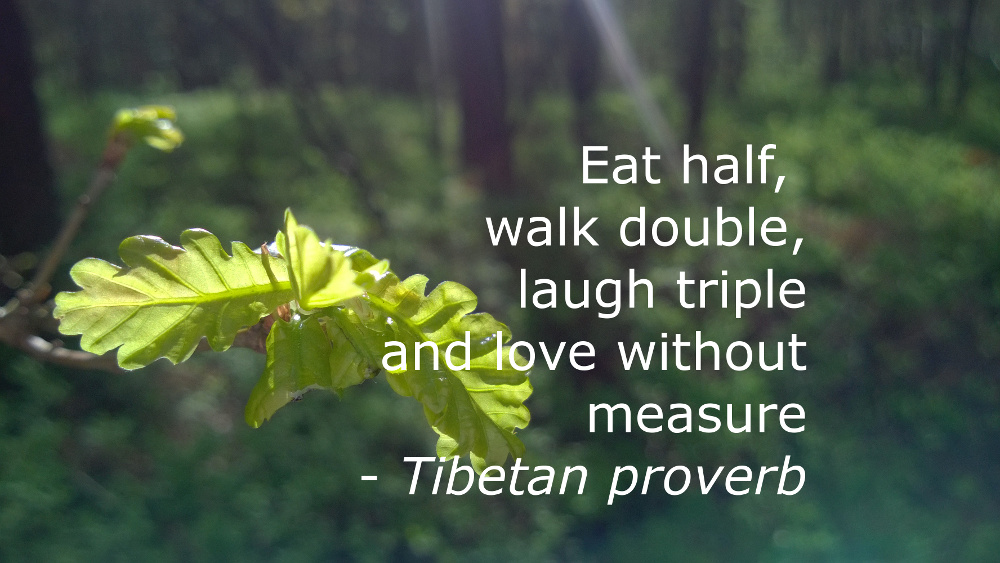 Eat Half, Walk Double, Laugh Triple and Love Without Measure - the Tibetan proverb and what I've been doing wrong all this time