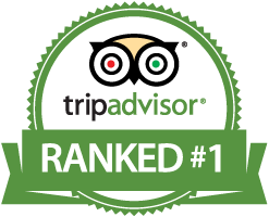 Tripadvisor Queens Food Tours