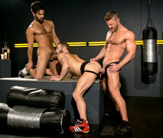 Cock Fight The Ultimate Showdown Match 4 With Gay Porn Stars Landon Conrad Shawn Wolfe And Adam Ramzi