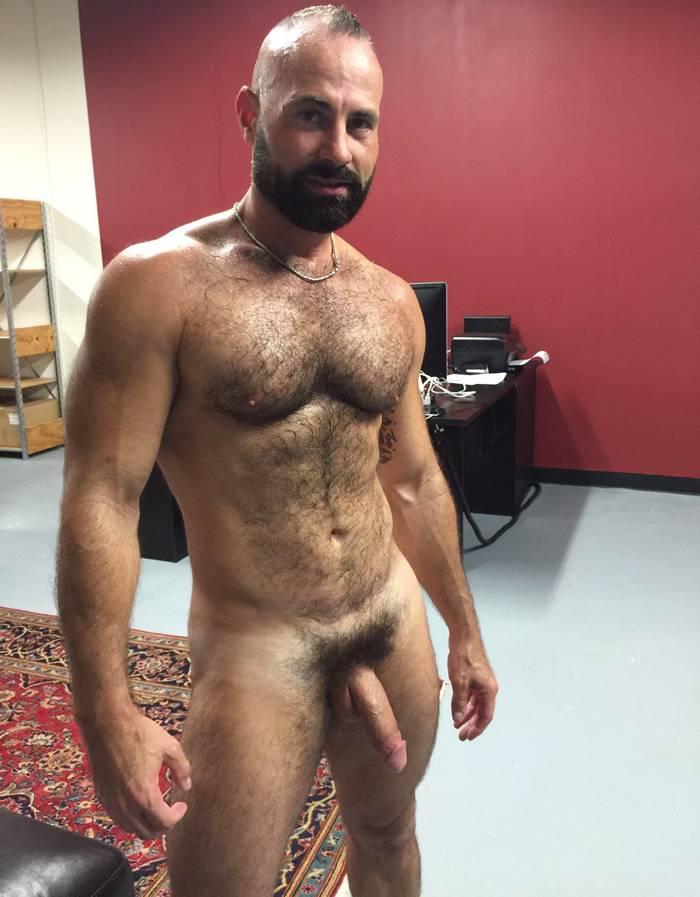 Free hairy gay porno