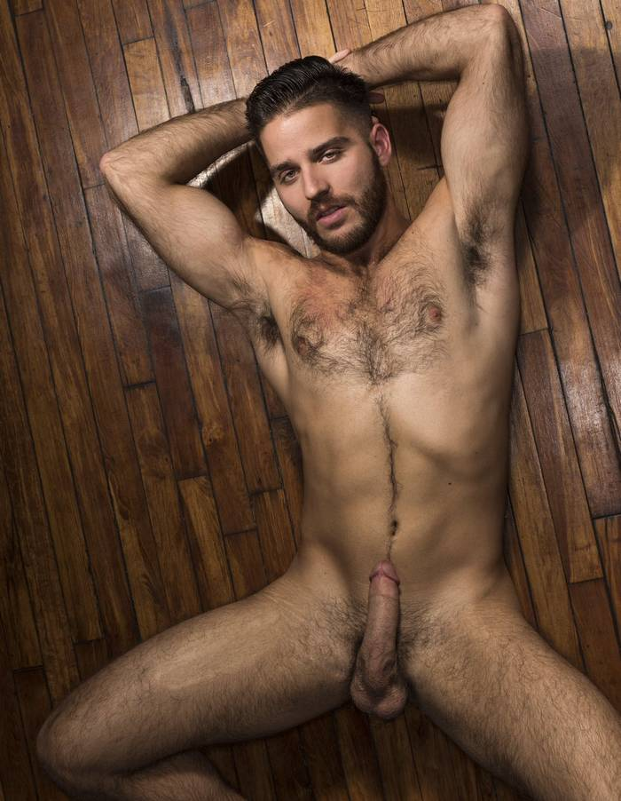 Hot and hairy gay