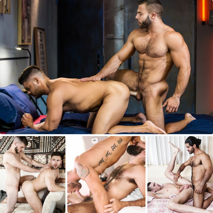 Gay Porn Diego Reyes Nicolas Brooks Ali Liam Jack Hunter Griffin Barrows Noah Jones Max Wilde Stephen Harte