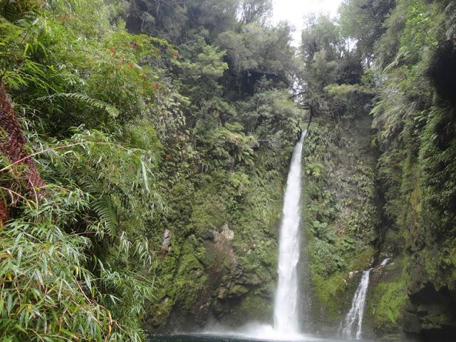 Experiencia mochileros en Parque Pumalín – Patagonia