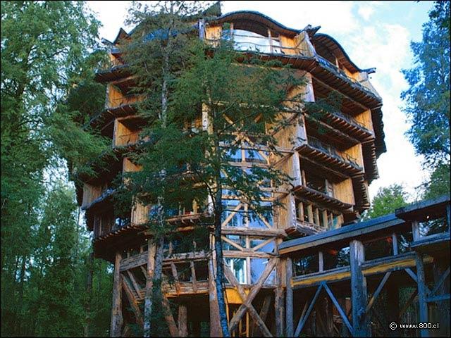 Hotel Nothofagus: El corazón de la Reserva Biológica Huilo Huilo