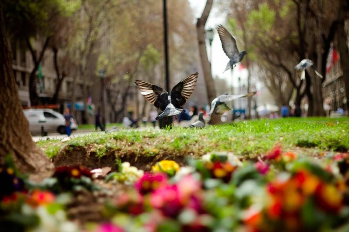 ¡Anímate! Te presentamos cinco lugares que debes visitar en esta primavera