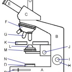 A Well Labelled Diagram Of Microscope E46 M3 Maf Wiring Glossary Terms Used In Microscopy Quekett Microscopical Club Modern