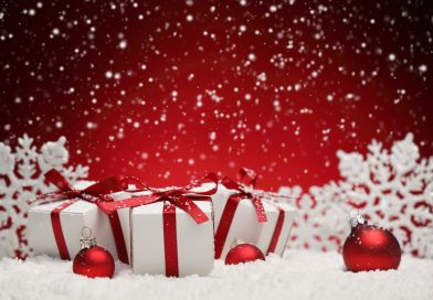 Quel vin bio choisir pour Noël?