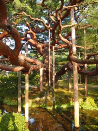 Jardin Kenrokuen (Kanazawa)