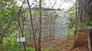 KSTR monkey cage