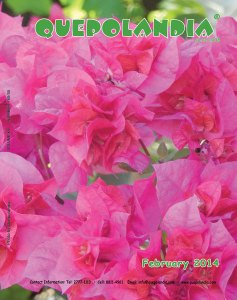 February 2014 cover