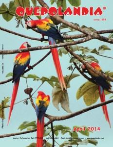 Quepolandia April 2014 cover
