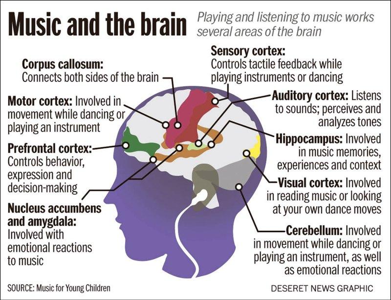 Brain activity on music