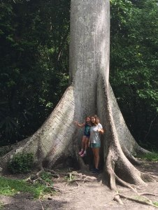My sister and me under a 400 year old ceiba tree in Tikal, Guatemala