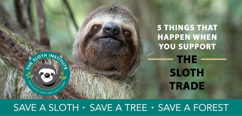 Sloth Institute header