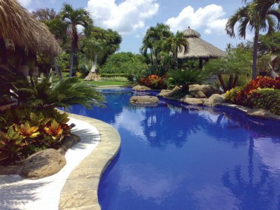 Tropical pool and patio