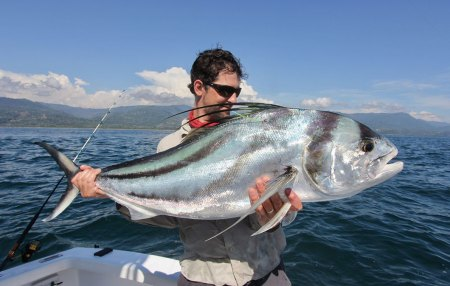 Man holding large rooster fish