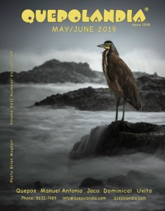 May/June 2019 cover