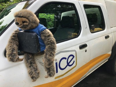 Toy sloth in an ICE truck