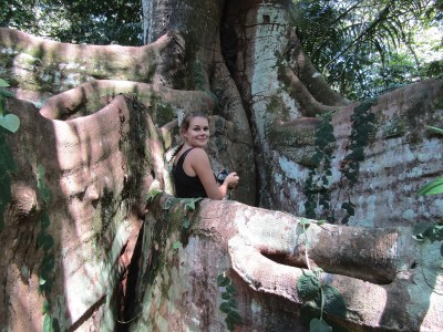 Woman standing at base of a huge tree