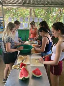 Volunteers preparing animal  meals