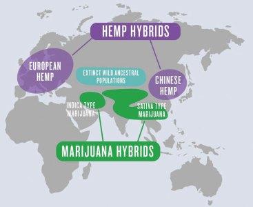 Map showing origins