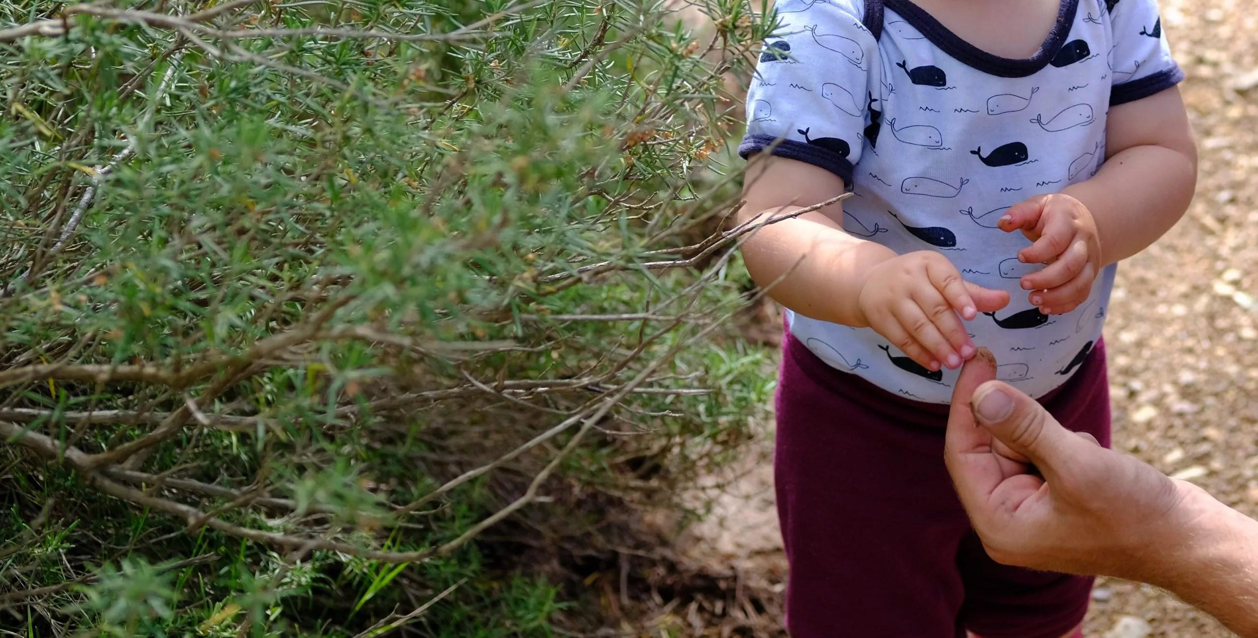 Wegbegleiter und Vorbild sein: Wie Kinder von Natur begeistert werden