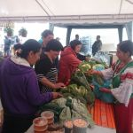 Ferias Sur-Siendo: Un encuentro entre el campo y la ciudad