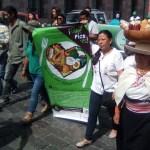Encuentro de semillas y danza en el marco del Kulla Raymi