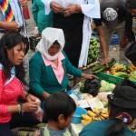 Trueque o cambeo en Pimampiro: reciprocidad milenaria que resiste y re-existe
