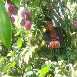 Jóvenes con energía para emprender agroecología