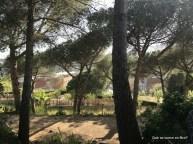 els garrofers alella restaurante km0 proximitat que se cuece en Bcn planes Barcelona (24)