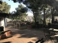 els garrofers alella restaurante km0 proximitat que se cuece en Bcn planes Barcelona (26)